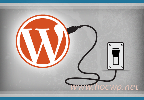 Mua plugin pro cho WordPress